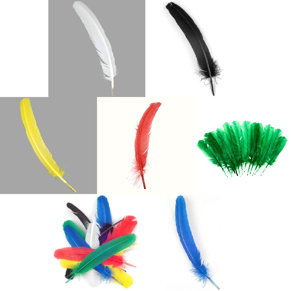 Quill Feathers 12 Pk