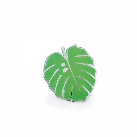 Pintastic - Little Monstera