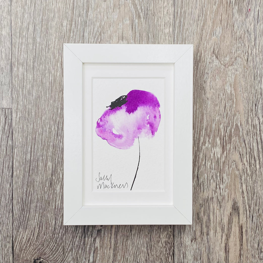 Purple Poppy - framed painting