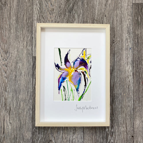 Irises - framed