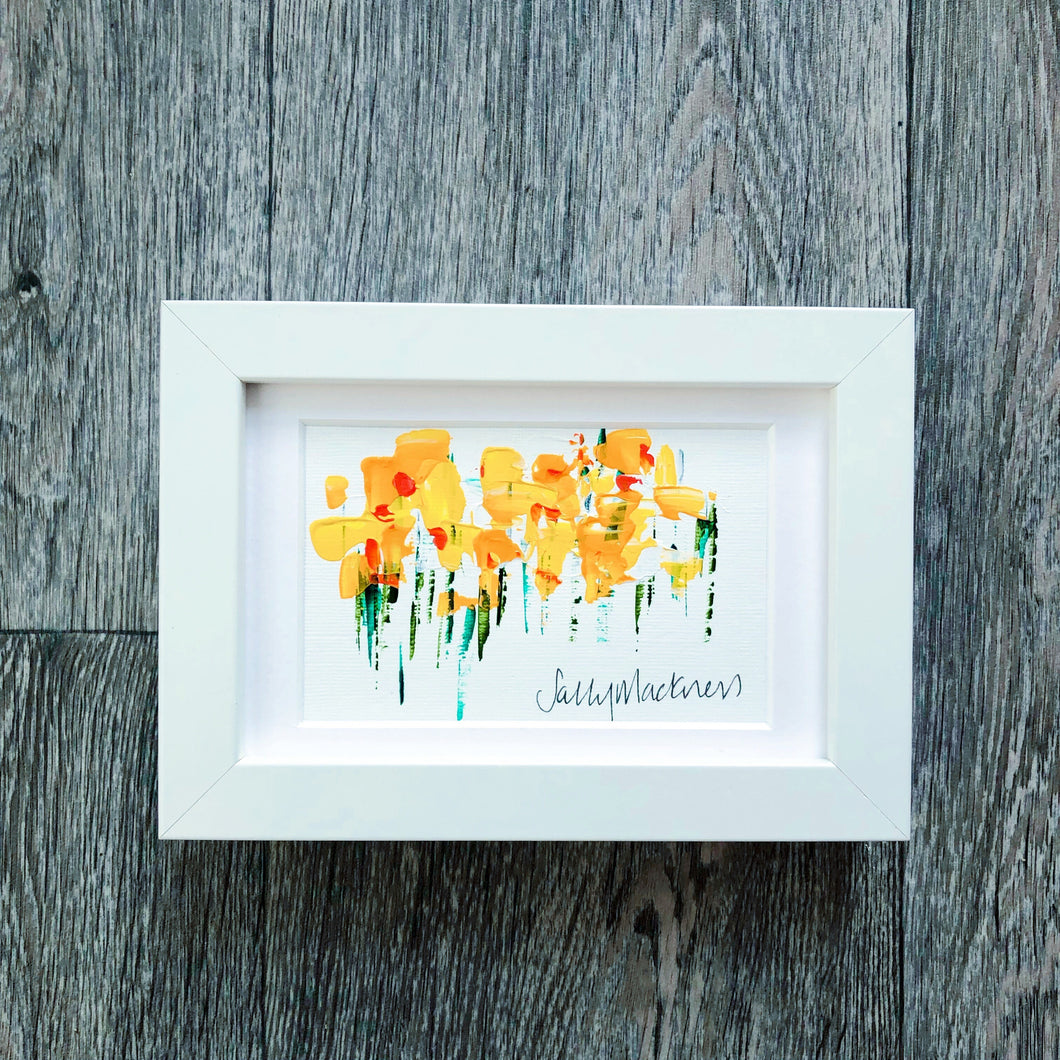 Mini Daffodils (landscape)  - framed - Sally Mackness