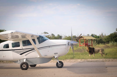 Mik's Destinations Tip - Fly-In Safari: The Highflyer