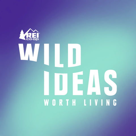 Ombre blue and turquoise background with the words wild ideas worth living in the middle
