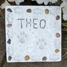 Paw Print Stepping Stone Kit - SKU 901-11234W