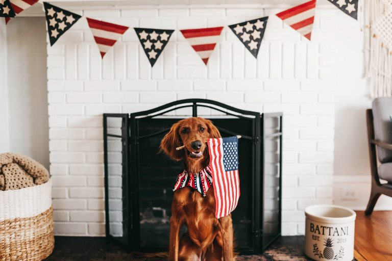 American Home Decor to Brighten Your July 4th 2020