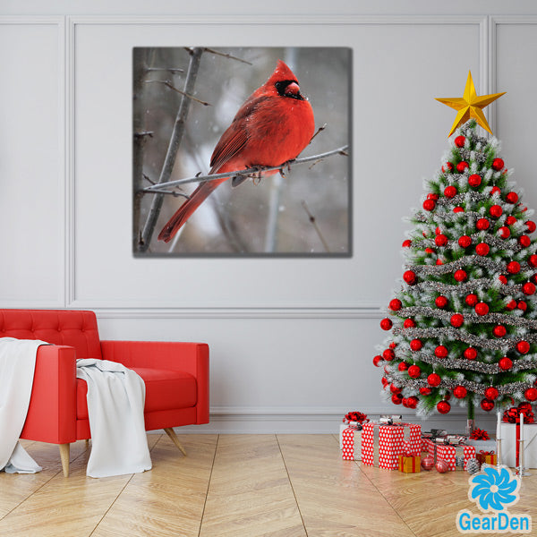 """Cardinal Bird In Winter Snow"" Premium Canvas"