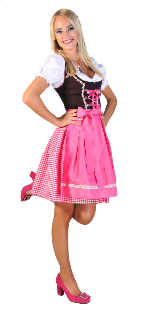 Why not just buy a Dirndl from Amazon?
