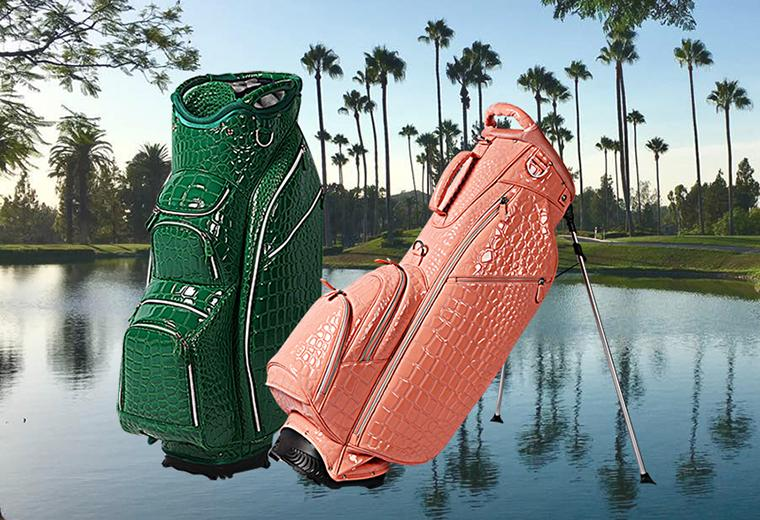 Alligator<br>Collection