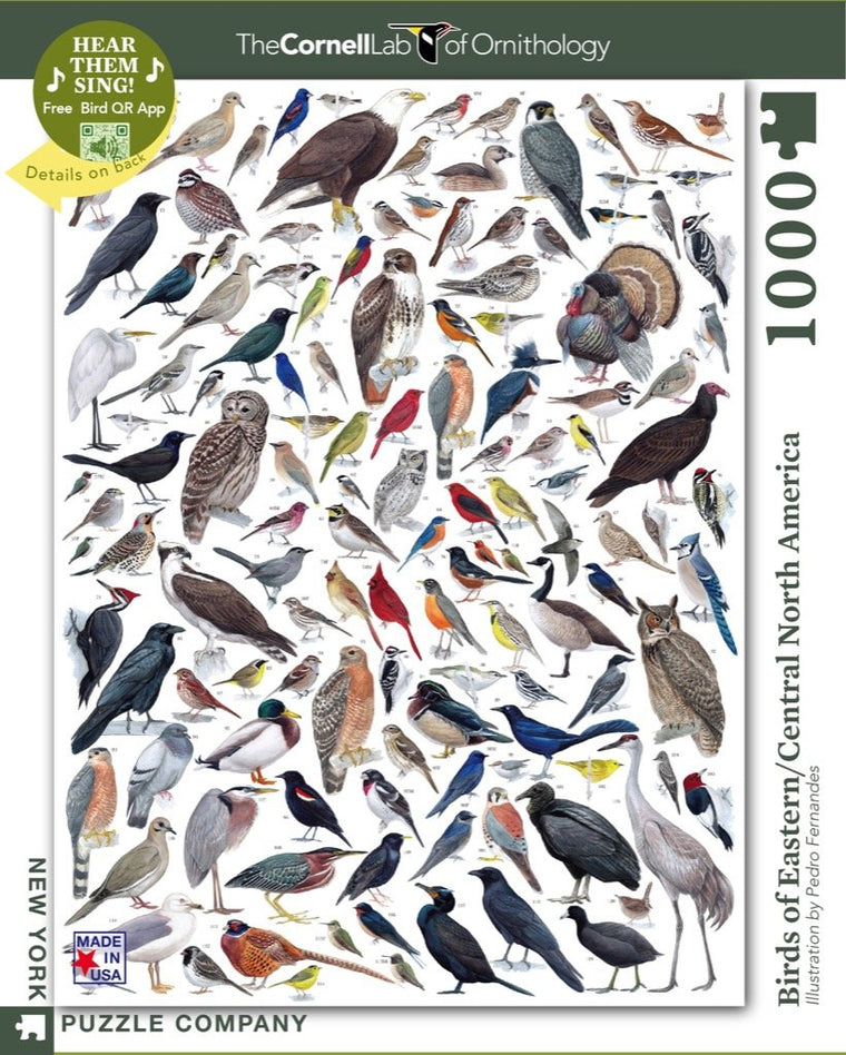 Birds of Eastern/Central North America: 1000 Piece Puzzle