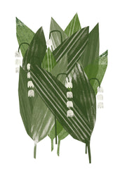 Micro Duluth : Lily of the Valley