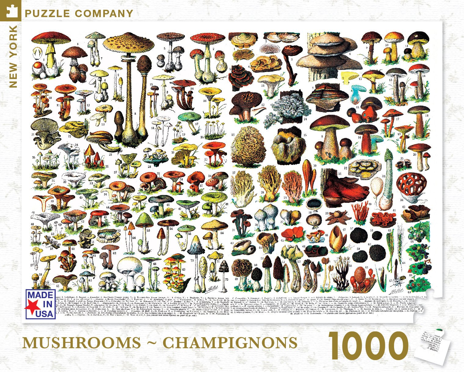 Mushrooms ~ Champignons: 1000 Piece Puzzle