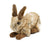 Plush Bunny inspired by <i>A Hare in the Forest</i> by Hans Hoffmann