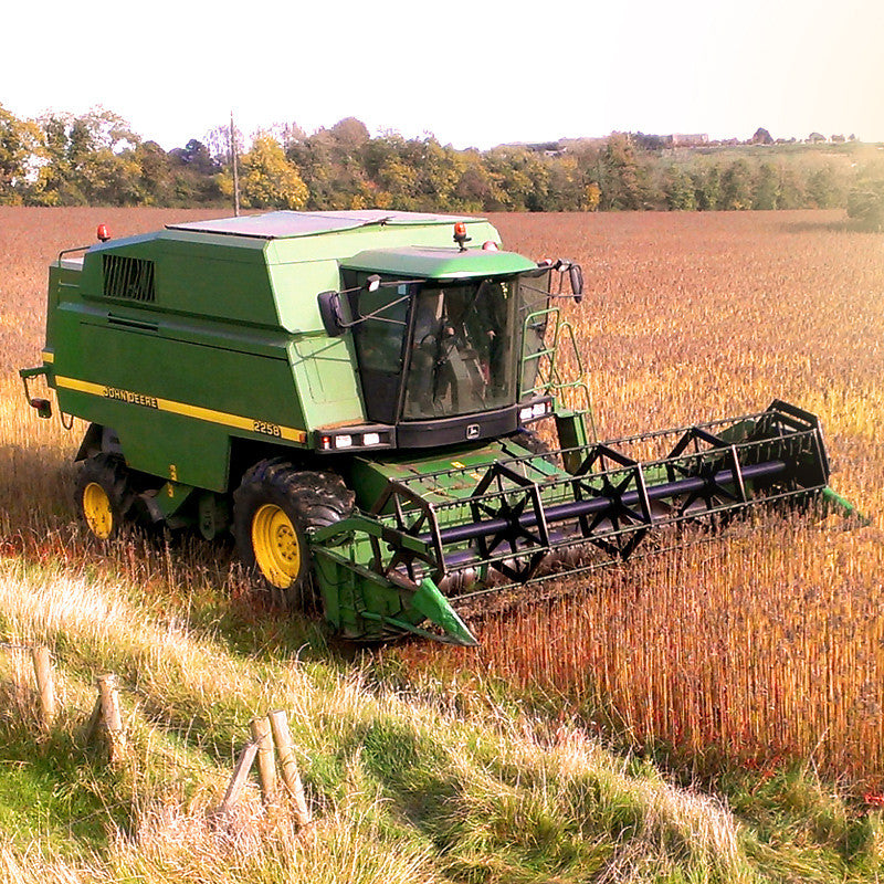 Celtic Wind Crops - Creating a Sustainable Future