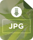 Download JPG icon