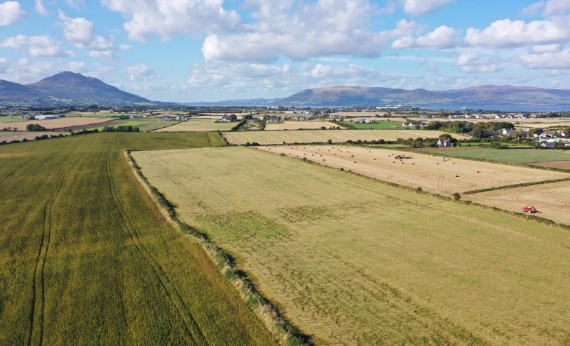 An aerial view of hemp fields and mountains