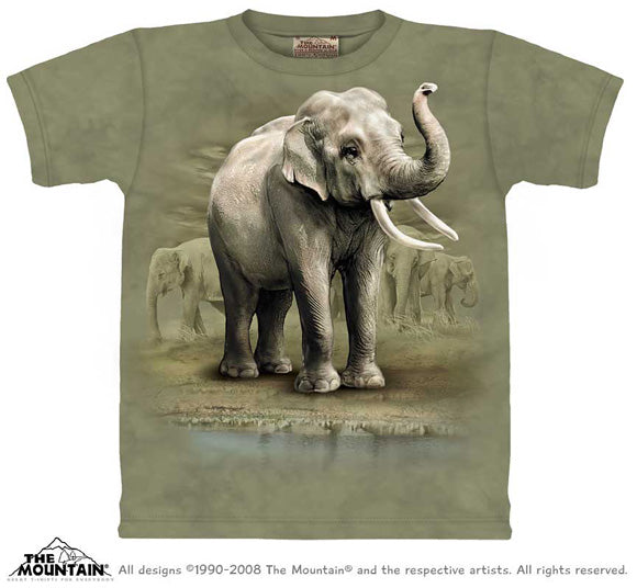 Asian Elephant Herd tie-dye T-shirt - M