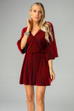 Whitney Long Sleeved Velvet Burnout Mini Dress - Vamp
