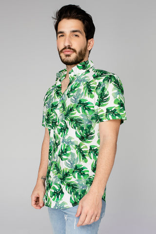 Robert Button Down Dress Shirt - Maui (Pre-Order)