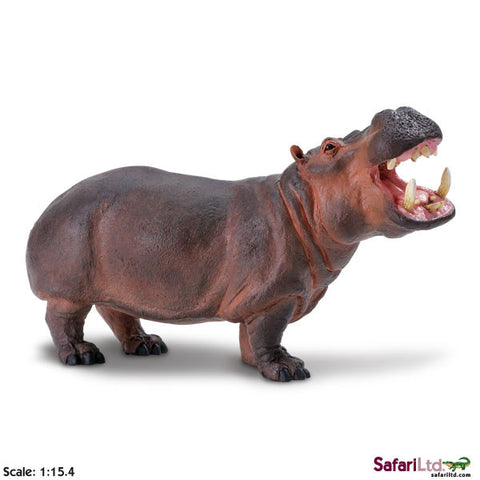 Safari Ltd Hippopotamus