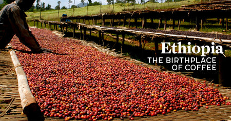 Ethiopia: The Origin of Coffee
