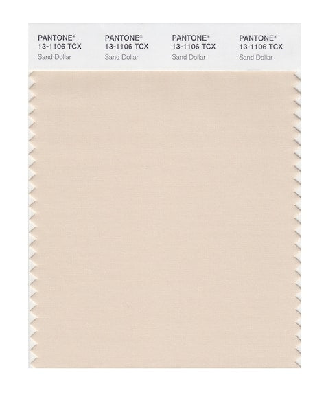 2006 Pantone Color of the Year - Sand Dollar 13-1106