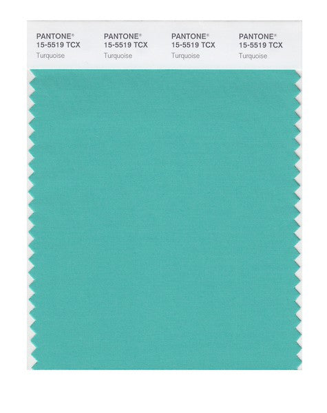 2010 Pantone Color of the Year - Turquoise 15-5519