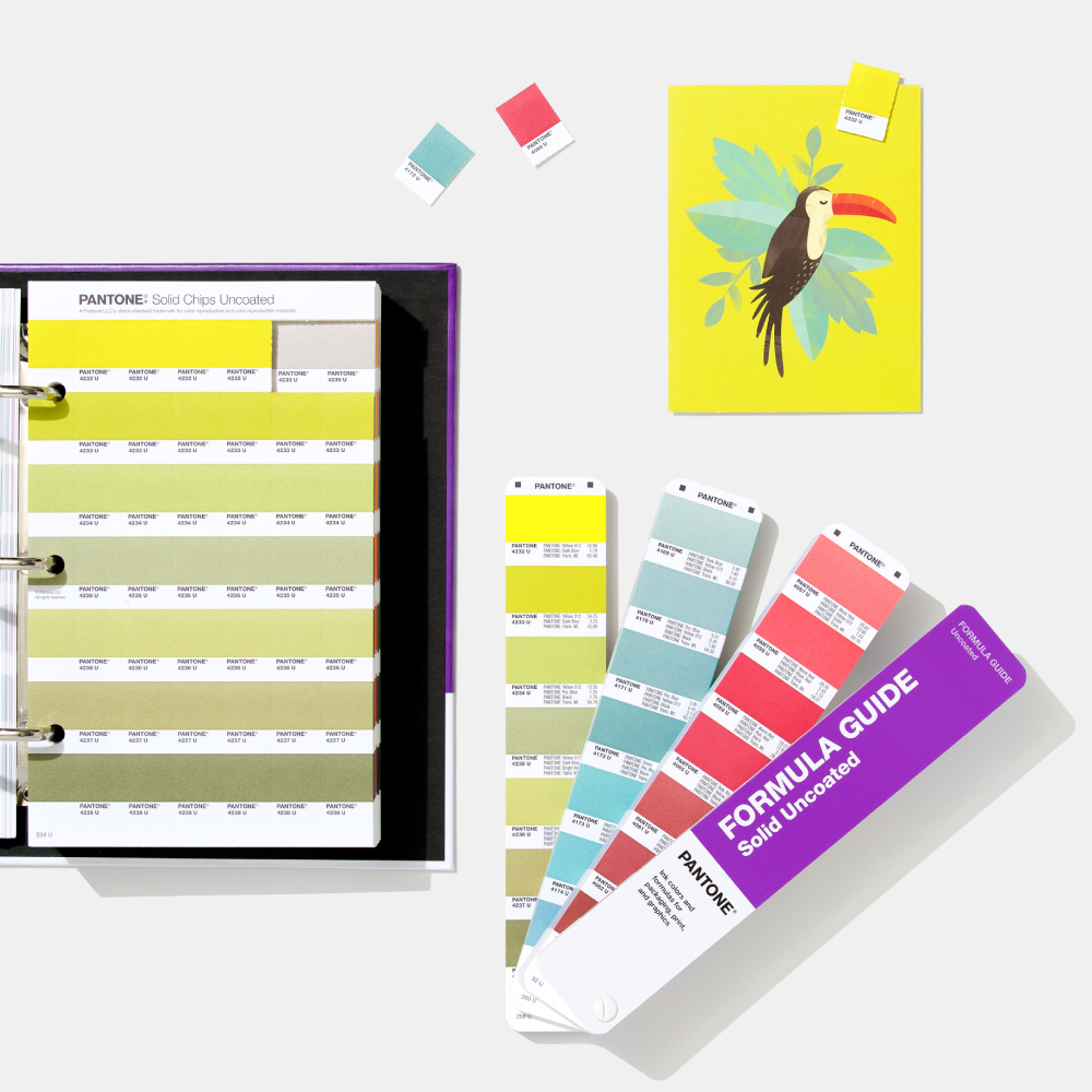 Pantone Formula Guide, Solid Chips Replacement Page, and toucan art work