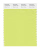 Pantone SMART Color Swatch 12-0435 TCX Daiquiri Green