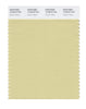 Pantone SMART Color Swatch 12-0619 TCX Dusty Yellow