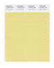Pantone SMART Color Swatch 12-0626 TCX Lemon Grass