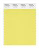 Pantone SMART Color Swatch 12-0633 TCX Canary Yellow