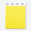 Pantone Polyester Swatch Card 12-0658 TSX Highlight