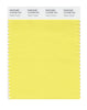 Pantone SMART Color Swatch 12-0738 TCX Yellow Cream