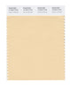 Pantone SMART Color Swatch 12-0813 TCX Autumn Blonde