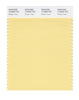 Pantone SMART Color Swatch 12-0826 TCX Golden Haze