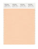 Pantone SMART Color Swatch 12-0917 TCX Bleached Apricot