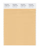 Pantone SMART Color Swatch 12-0921 TCX Golden Straw