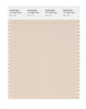 Pantone SMART Color Swatch 12-1404 TCX Pink Tint