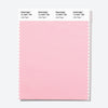 Pantone Polyester Swatch Card 12-2007 TSX Little Piglet