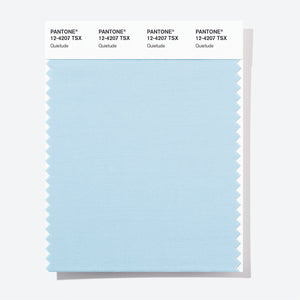 Pantone Polyester Swatch Card 12-4207 TSX Quietude