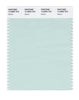 Pantone SMART Color Swatch 12-5505 TCX Glacier