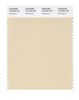 Pantone SMART Color Swatch 12-0709 TCX Macadamia
