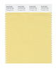 Pantone SMART Color Swatch 12-0718 TCX Pineapple Slice