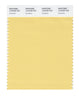 Pantone SMART Color Swatch 12-0729 TCX Sundress
