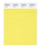 Pantone SMART Color Swatch 12-0737 TCX Goldfinch