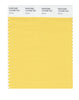 Pantone SMART Color Swatch 12-0758 TCX Yarrow