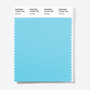 Pantone Polyester Swatch Card 13-4421 TSX Castaway