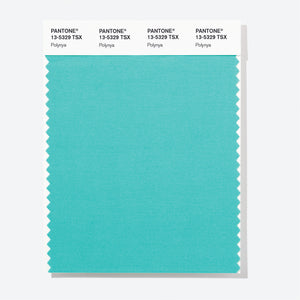 Pantone Polyester Swatch Card 13-5329 TSX Polynya