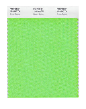 Pantone Nylon Brights Color Swatch 13-0340 TN Green Gecko