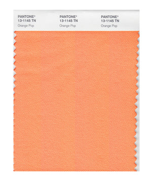 Pantone Nylon Brights Color Swatch 13-1145 TN Orange Pop